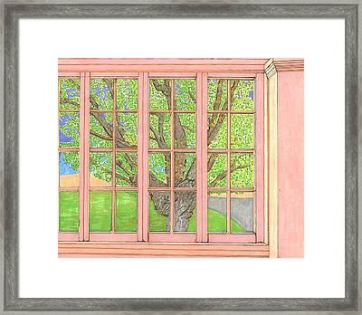 Mother Weller's Tree Framed Print