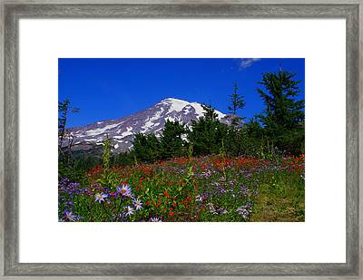 Mount Rainier Framed Print by Jerry Cahill