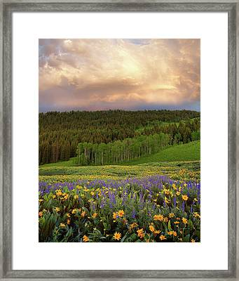 Mountain Color Framed Print