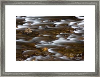 Mountain Stream 2008 Framed Print