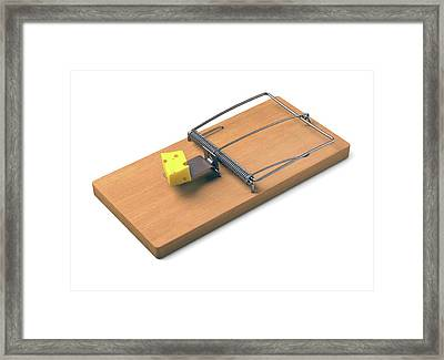 Mousetrap With Cheese Framed Print