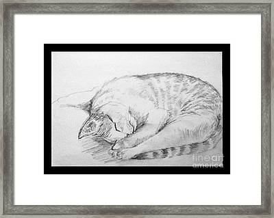 My Pet Cat Framed Print