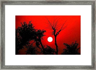 Nature Framed Print by Viren Rana