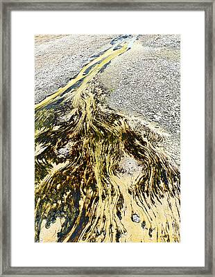 Nature's Inkblot Test - Abstract Runoff Of A Hot Spring With Algae And Bacteria. Framed Print by Jamie Pham