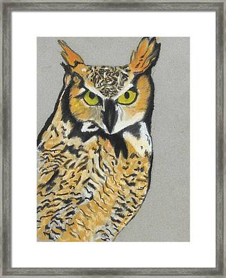 Framed Print featuring the painting Night Owl by Jeanne Fischer
