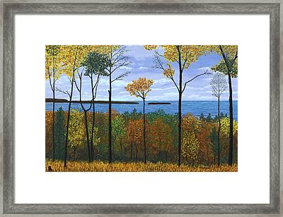 North Orchard View Framed Print