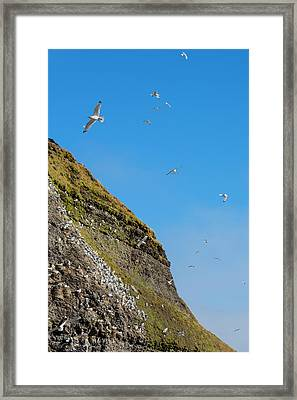 Norway Svalbard Barentsoya Framed Print