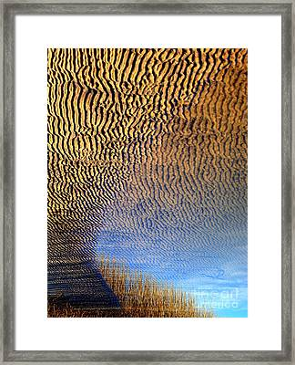 Framed Print featuring the photograph Oasis by Robert Riordan