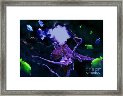 Framed Print featuring the mixed media Octopus by Steed Edwards