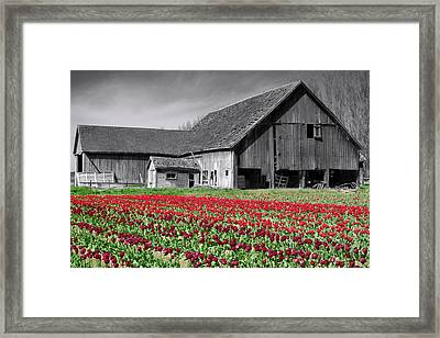 Framed Print featuring the photograph Old And New by Matthew Ahola