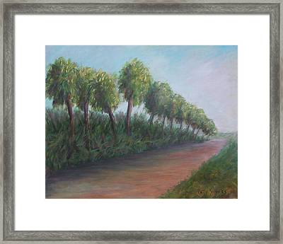 Old Florida Road Framed Print by Patty Weeks