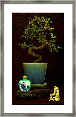 Old Man And The Tree Framed Print