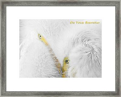 On Your Birthday Framed Print by Dawn Currie
