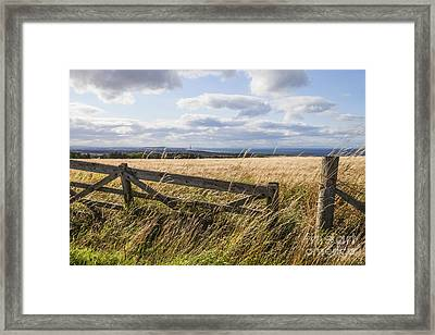 Open Gate Framed Print