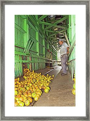 Orange Processing Factory Framed Print by Jim West