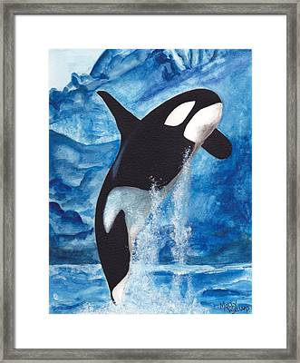 Orca Framed Print by Molly Williams