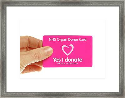 Organ Donor Card Framed Print by Cordelia Molloy