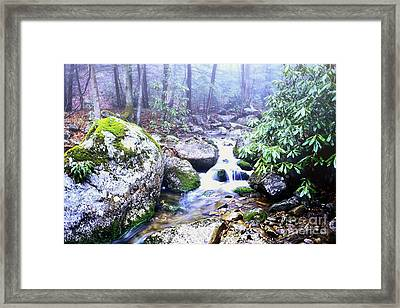 Otter Creek Wilderness Framed Print by Thomas R Fletcher