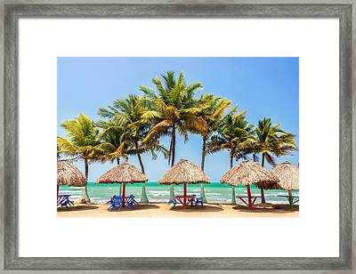 Palm Trees And Sea Framed Print