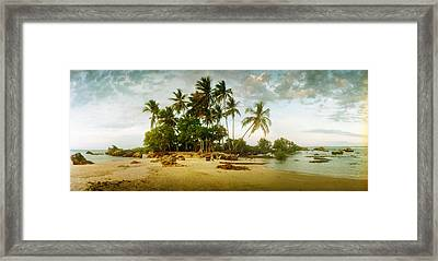Palm Trees On The Beach In Morro De Sao Framed Print