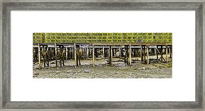 Panorama Of Pier In New Harbor Maine At Low Tide Framed Print by Keith Webber Jr