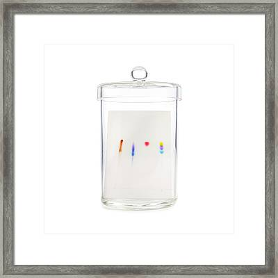 Paper Chromatography Framed Print by Science Photo Library