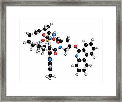 Paritaprevir Hepatitis C Virus Drug Framed Print