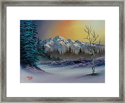 Frosty Enchantment Framed Print by C Steele