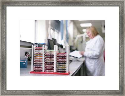 Pathology Lab Framed Print