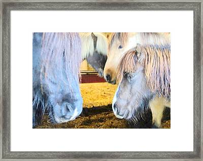We Want Peace And Love Forever, And Nothing More   Framed Print