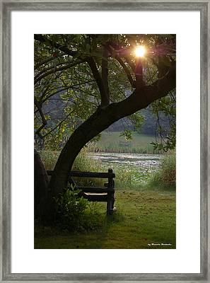 Framed Print featuring the photograph Peaceful Moment by Tannis  Baldwin