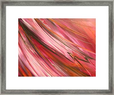 Peacock Framed Print by Lisa Williams