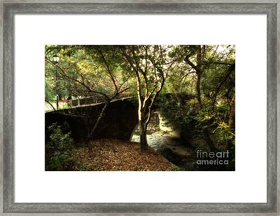 Pedestrian Bridge And Strawberry Creek  . 7d10152 Framed Print