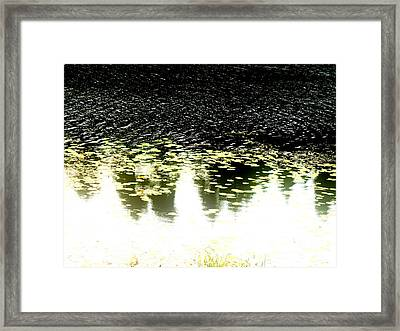 Peek Framed Print by Pauli Hyvonen