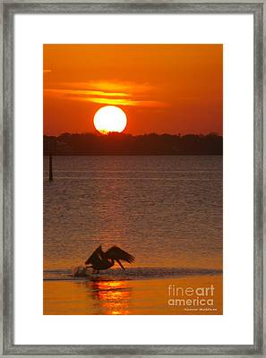 Framed Print featuring the photograph Pelican Sunset by Tannis  Baldwin