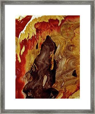 Petrified Wood Framed Print