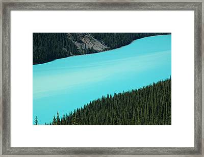 Peyto Lake. Banff National Park In Alberta. Framed Print