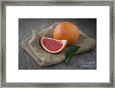 Pink Grapefruit Framed Print by Sabino Parente