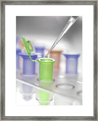 Pipette And Vial Framed Print