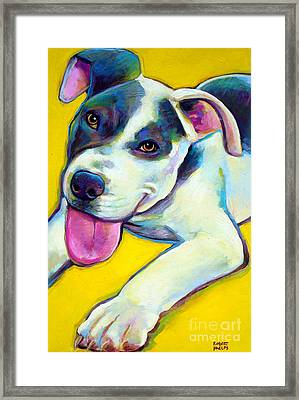 Framed Print featuring the painting Pit Bull Puppy by Robert Phelps