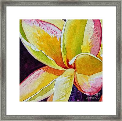 Plumeria Framed Print by Terry Holliday