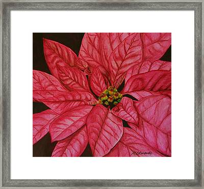 Poinsettia Framed Print by Marna Edwards Flavell