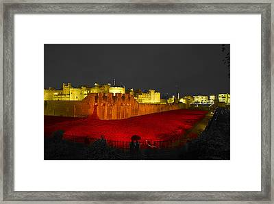 Poppies Tower Of London Night   Framed Print by David French