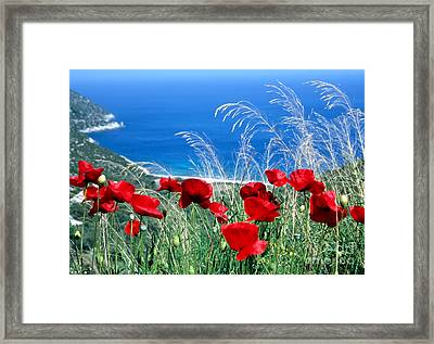 Framed Print featuring the photograph Poppy Flowers by George Atsametakis
