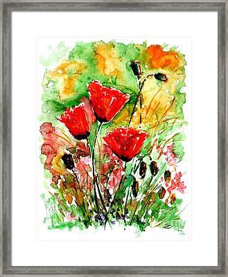 Poppy Lawn Framed Print by Zaira Dzhaubaeva