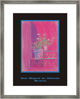 Poster - Pink Geranium Framed Print by Marcia Meade