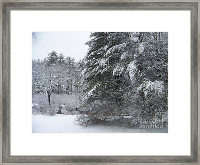 Powdered Sugar Framed Print by Eunice Miller