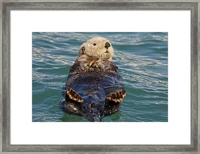 Prince William Sound, Alaska, Sea Framed Print