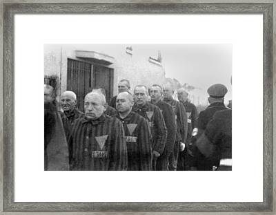 Prisoners In The Concentration Camp Framed Print