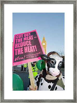 Protestors At A Climate Change Rally Framed Print by Ashley Cooper